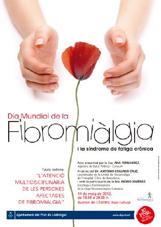 Diseño grafico El Prat de Llobregat-cartel DIA FIBROMIALGIA
