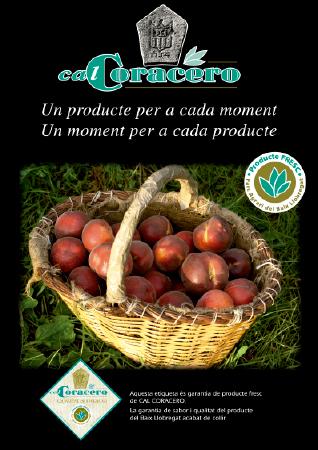 Diseño grafico El Prat de Llobregat-cartel CAL CORACERO