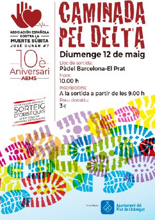 Diseño grafico El Prat de Llobregat-cartel CAMINADA POPULAR