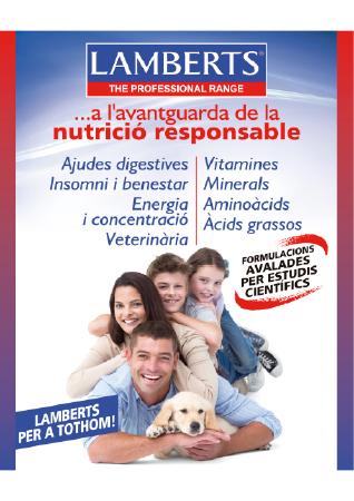 Diseño grafico El Prat de Llobregat-cartel LAMBERTS