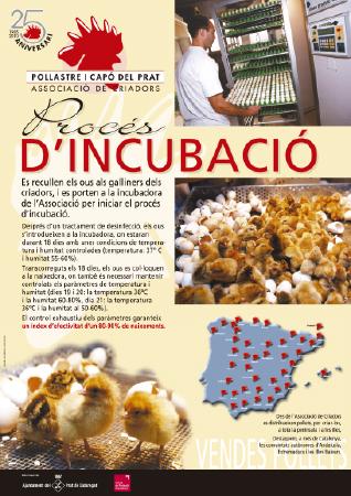 Diseño grafico El Prat de Llobregat-cartel ASSOCIACIO CRIADORS