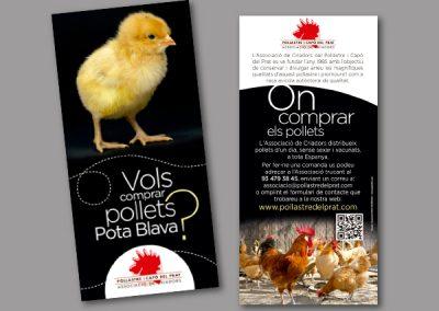 Diseño de folletos en el Prat de Llobregat - FOLLETO FLYER CRIADORS