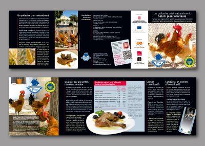 Diseño de folletos en el Prat de Llobregat - FOLLETO VALORES NUTRITIVOS POLLO